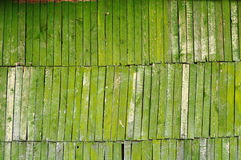 Textured old wood. Green plank wood background texture Stock Images