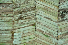 Textured old wood. Green plank wood background texture Royalty Free Stock Photo