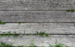 Textured old wood stripe with green grass. Textured old wood stripe in horizontal line with green grass Stock Image