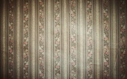 Textured ornament background Stock Photos