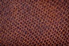 Textured pattern on brown suede Royalty Free Stock Photos