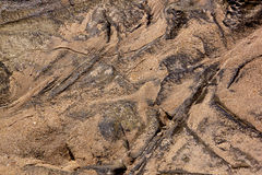 Textured Patterns on Rocks and Sand at Seashore Stock Image