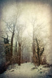 Textured winter scene Royalty Free Stock Photos