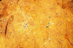Textured Piece Of Oceanic Rock Royalty Free Stock Image