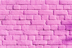 Textured pink brick wall Stock Images