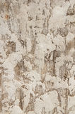 Textured Plaster Wall Stock Image