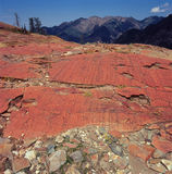 Textured redrock in the Uinta-Wasatch-Cache National Forest, Wasatch Range, Utah. The Wasatch Range is hot, dry and challenging in the scorching Utah summers but stock image
