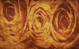 Textured rose Stock Image