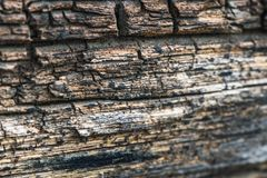 Textured rough wood Stock Image