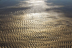 Textured sand in evening, the Baltic sea coast. Natural textured sand in evening, the Baltic sea coast Stock Photography