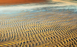 Textured sand in evening, the Baltic sea coast. Textured sand in evening,sunset, the Baltic sea coast Stock Image