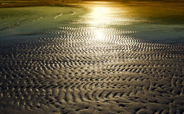 Textured sand in evening, the  sea coast. Textured sand from waves in evening, the Baltic sea coast Stock Images