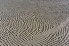 Textured Sand Ripples at Low Tide Stock Photo