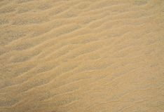 Textured sandy surface Stock Image