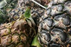 Textured skóra ananas jako tło Zdjęcie Royalty Free