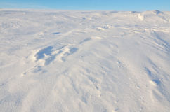 Textured snow in windy conditions Royalty Free Stock Photography