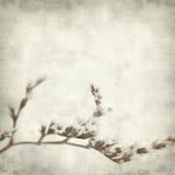 Textured stary papierowy tło Obrazy Stock