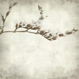 Textured stary papierowy tło Zdjęcie Royalty Free
