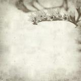 Textured stary papierowy tło Zdjęcia Royalty Free