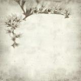 Textured stary papierowy tło Fotografia Stock