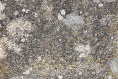 Textured stone wall Royalty Free Stock Images