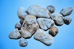 Textured Stones Stock Photos
