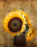 Textured Sunflowers Royalty Free Stock Photo