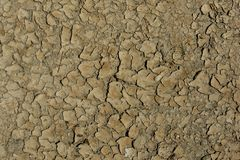 The cracked surface of the soil stock photo
