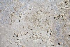 Textured szarości powierzchnia na brudnej cement ścianie Zdjęcia Royalty Free