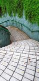 Textured of the tile pattern down the stairs with full green vine on the rough wall in garden park. Exterior design and Beauty of Nature royalty free stock image