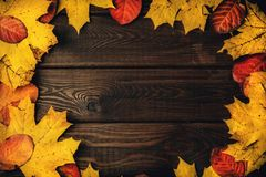 Textured vintage rustic wooden background with autumn red and yellow leaves as frame, copy space for your text Royalty Free Stock Photos