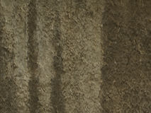 Textured wall. Textured plaster wall - great for background Stock Photography