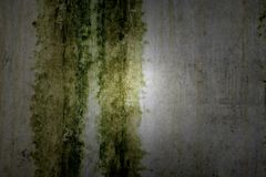 Textured wall with nice light Royalty Free Stock Image