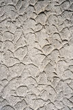 Textured wall plaster pattern Stock Photos