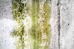textured wall and rain and fungus Stock Photo