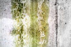 textured wall and rain and fungus Stock Photo