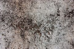 Textured walls with dirt. royalty free stock photography