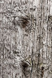 Textured wood surface Stock Image