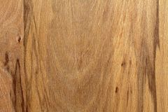Textured wood veneer with veins Royalty Free Stock Photography
