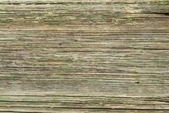 Textured wooden background. The old mill house or shed.  Stock Image
