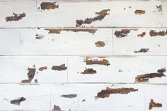 Textured wooden background, old white surface with a worn texture of the wood stock photo