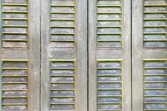 Textured wooden shutter or sun-protection blinds Royalty Free Stock Image