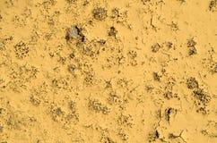 Texturen av den gula gamla målarfärgen på betongen Royaltyfri Foto
