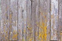 Texturen av det gamla sjaskiga gråa staketet och kvarlevorna av gul målarfärg arkivbilder
