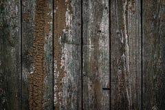 Texturen av det gamla trästaketet med skalning av målarfärg och av sprickor Tapet f?r tappningdesign royaltyfri bild