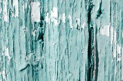 Texturen av en grön målarfärg Arkivfoto