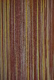 Texturen av ett exotiskt träd Bakgrundsträt royaltyfria foton