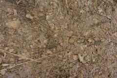 Texturen av jorden med ett litet belopp av snö utan växter medf8ort close upp Top beskådar royaltyfri illustrationer