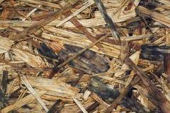 Texturen av kryssfaneren Royaltyfria Bilder