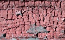 Texturen av rosa färgmålarfärg Royaltyfri Bild